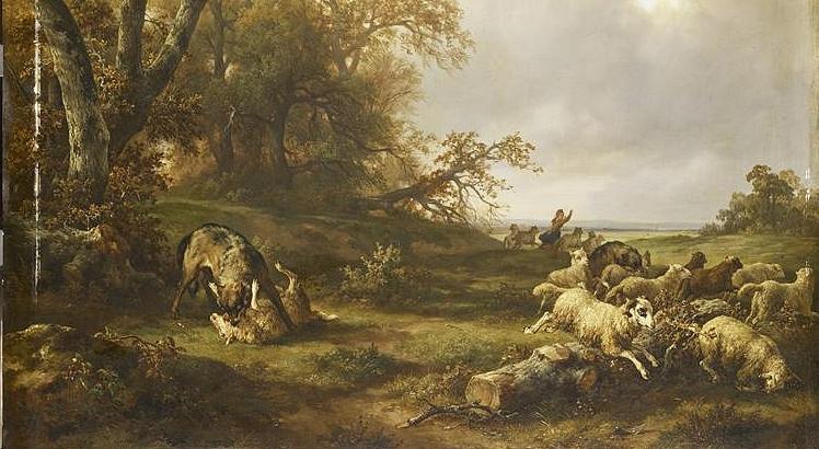 Loup dévorant une brebis